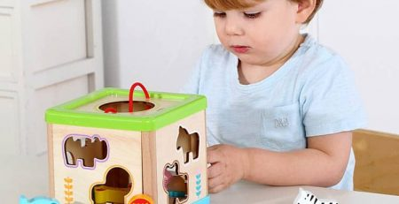 best baby toys - animal sorter cube block toy